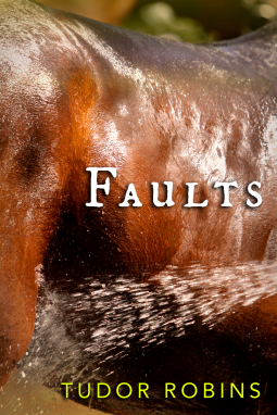 Faults Book Cover